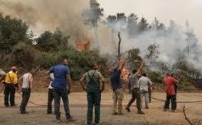 Φωτιά στην Εύβοια: Μαίνεται ανεξέλεγκτη σε τρία μέτωπα – Μπαράζ εκκενώσεων  οικισμών | Η ΚΑΘΗΜΕΡΙΝΗ